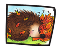 Fall Hedgie 5